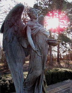 ~ ღ Skuwandi ~ Cemetery Angel Cemetery Angels, Cemetery Statues, Cemetery Headstones, Old Cemeteries, Cemetery Art, Angel Statues, Graveyards, Angel Sculpture, Sculpture Art