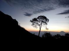 Wonderful journey to merbabu mountain :))