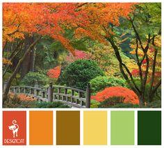 Autumn 3: Terracotta, Orange, Green, Yellow - colour Inspiration pallet