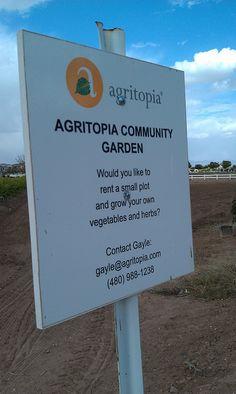 Around Town: Community Garden at Farmers Grill - Gilbert AZ