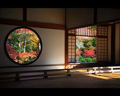 Blooming Dojo - Japan Glorious!