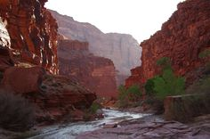 Beautiful dawn light on our last morning in Paria Canyon