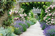 Roses and lavender at hestercombe, somerset rosen, zaubergarten, stauden, k Formal Gardens, Outdoor Gardens, Garden Paths, Garden Landscaping, Somerset Garden, Dream Garden, Home And Garden, Cottage Garden Design, Lavender Garden