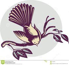 new-zealand-fantail-bird-11833561.jpg (1300×1226)