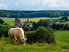 Epen. Zicht op kasteel Beusdaal.