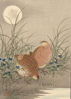 Lot: Ohara Koson: Quail and Moon, Lot Number: 0089, Starting Bid: $1, Auctioneer: Jasper52, Auction: Japanese Woodblock Print Auction, Date: March 5th, 2017 PST