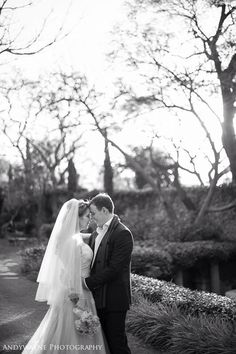 Andy Wayne photography - shepstone gardens