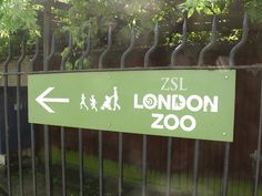 Animals already living under questionable conditions at the London Zoo are being forced to endure loud, late-night parties complete with rowdy alcohol consumption. Demand the London Zoo end its after-hours parties immediately. Fun Days Out, Family Days Out, England Ireland, London Places, London Calling, London Travel, Great Britain, The Neighbourhood, Night Parties