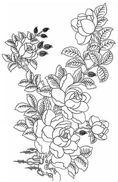 Roses Flowers Super Coloring Adult Colouring For