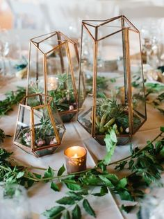 Not only are terraniums modern and chic, but used as a wedding centerpiece works like a charm.