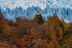 Glaciar Patagonia, Mountains, Landscape, Nature, Painting, Beautiful, Autumn, Lakes, Santa Cruz