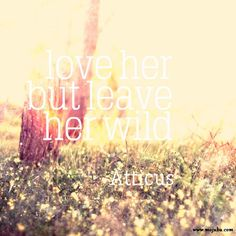 10 Best Quotes About Love | Mojuba Wedding | Blog | #atticus #love #quote #wedding