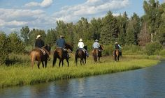 Jackson Hole Horseback Riding, Horse Trail Rides - All Trips
