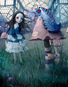 Alice and The Blue Caterpillar by Natalie Shau