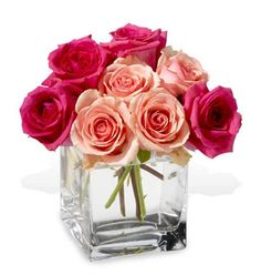 My second favorite flower: pink roses in all different shades