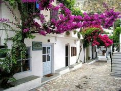 Barber shop in Skyros Zorba The Greek, Just Like Heaven, Greek Life, Island Life, Greek Islands, Cool Photos, Amazing Photos, Places To Go, Home And Garden