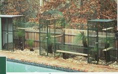 Cat Enclosure -- Complete with outdoor cat tunnels and a shelf for bedding. Wire cat tunnels can go from your house to the cat enclosure. Outdoor Cat Pen, Outdoor Cat Tunnel, Outdoor Cat Enclosure, Cat Cages, Cat Run, Cat Towers, Cat Condo, Cat Life, Crazy Cats