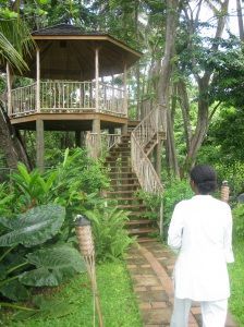 I would have an elegant, romantic, fun treehouse at my Dream Spa Retreat! #spaweek