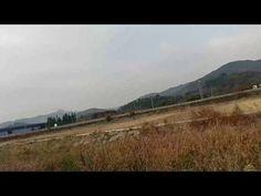 선소천의 텃새들과 철새