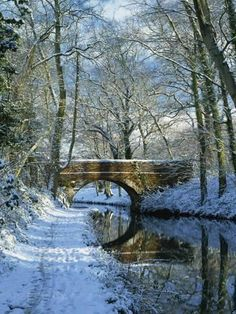 Snow on the Basingstoke Canal, Stacey's Bridge and Towpath, Winchfield, Hampshire, England Hampshire England, England Uk, Espanto, Winter Scenery, Canal Boat, Narrowboat, Snow Scenes, English Countryside, Covered Bridges