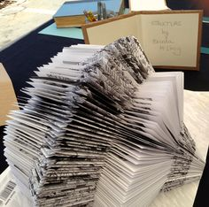 a striking folded book sculpture, how would you read this black and white beauty?