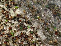 a beach full of beachglass? LOVE THIS.