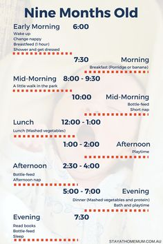 Handy Printable to help with routines for a nine month old baby