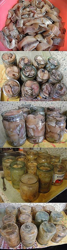 we preserve a small fish-. Russian Recipes, Learn To Cook, Fish And Seafood, Fish Recipes, Preserves, Food Art, Pickles, Diy And Crafts, Stuffed Mushrooms