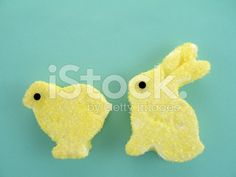 Marshmallow Easter Bunny and Chick royalty-free stock photo