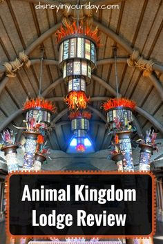 Animal Kingdom Lodge review - all about one of my favorite Disney resorts.  Great food, great accommodations, and you can see animals from your window!