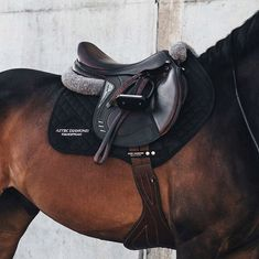 Why do you think is it essential to consider the proper suggestions in acquiring the equestrian boots to be utilized with or without any horseback riding competitors? Horse Riding Gear, Riding Hats, Horse Gear, Equestrian Boots, Equestrian Outfits, Equestrian Style, Equestrian Problems, Cavalo Wallpaper, English Riding