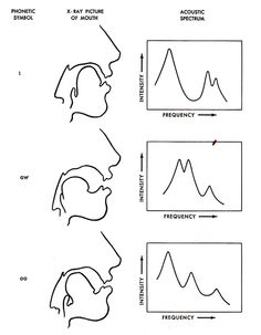 Vocal tract configurations and corresponding mouth configurations for three different vowels. (The peaks of the spectra represent vocal tract resonances.