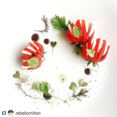 #Repost @rebellomilton with @repostapp  #Strawberry #bocconcini #balsamic #reduction #basil infused @threefarmersca #camelina oil sea #saltcrystal #microgreens @The_Wascana @rebellofoodstudio  #love #salad #summer #swag #cleaneating #chefswag #art #beautiful #chef #cheflife #delicious #eat #fun #food #foodie #igers #nomnomnom by singh_somit01