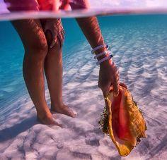 Shell-Coral-Beach-Sea-Ocean-Girl-Water-Swimming-Summer-Shiwi