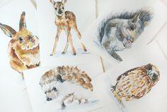 Woodland Animal Watercolor Card Set, via Etsy.