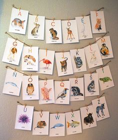 Animal Alphabet Flash Cards - 4 x 6 – Susan Windsor
