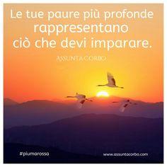 Le tue paure sono parte di te. Accoglierle e accettarle è il primo passo per alleggerire il tuo essere. Poi affrontale, fa che vivano una evoluzione.  Loro, le paure, rappresentano gli ostacoli che devi superare per fare un passo avanti. Quando guardi in faccia le tue paure e le riconosci, il loro potere diminuisce. E allora riesci a percorrere una nuova strada.  #piumarossa #citazioni   www.assuntacorbo.com