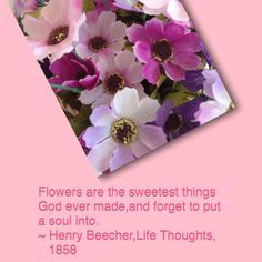 Flowers say ....