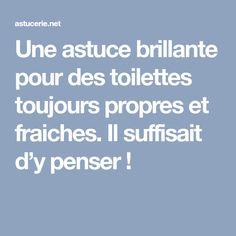 Une astuce brillante pour des toilettes toujours propres et fraiches. Il suffisait d'y penser !