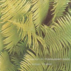 Edgar Froese - Epsilon in Malaysian Pale (1975)