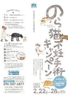 2019年2月TNRのチラシが出来上がりました!   熊本の竜之介動物病院 緊急時24時間対応可 Graphic Design Flyer, Japanese Graphic Design, Brochure Design, Flyer Design, Layout Design, Web Design, Logo Design, Text Layout, Poster Layout