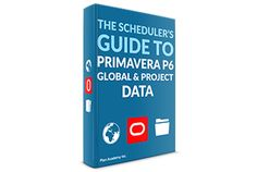A Guide to Primavera P6 Global & Project Data