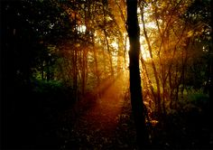 Sunrise by Leila on Fotoblur | Nature Photography