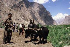 Farmers in Northern Pakistan