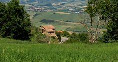 The town is located to the west of Pienza, close to the Crete Senesi in Val d'Orcia