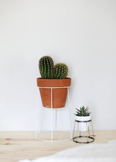 Upcycling alert: these #DIY plant stands by @themerrythought are made from thrifted lampshades. Now that's smart.