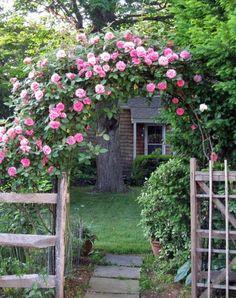 wwonderfulworld:  Beauty on We Heart It - http://weheartit.com/entry/53017567/via/twisterfriend