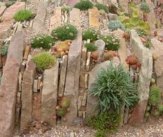 beautiful and simple crevice garden ...