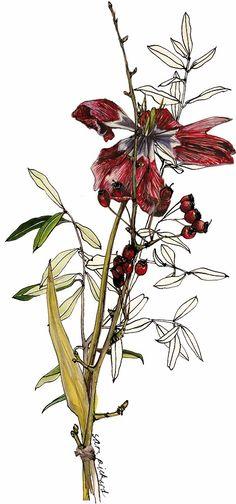 Planet Sam: Posy - Olive, Tulip, Hawthorn