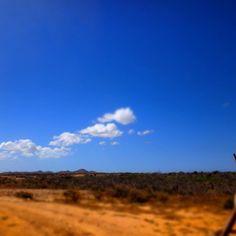 Paisaje bonito #desertsands #nofilter #colombia #puntagallinas #solitarysociety #travelcom #blueskies #cactusland